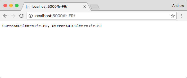 Applying the RouteDataRequest CultureProvider globally with middleware as filters