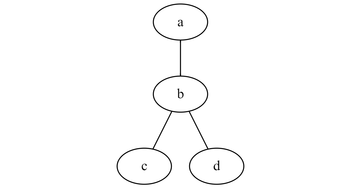 A simple undirected graph