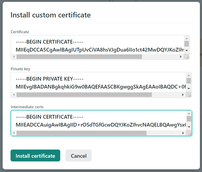 Adding the certificate values to Netlify